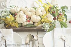 Fall centerpiece with white pumpkins and wildflowers