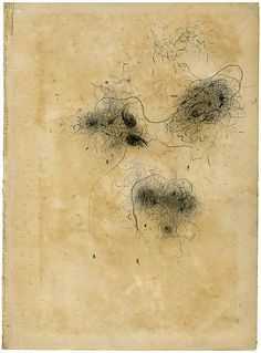 Olivia Jeffries /  dust study, pencil on book page
