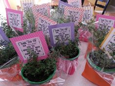 Thank you for your thyme! Parent volunteer gift.