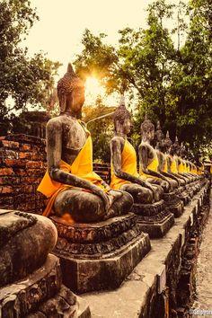 Buddhas @ Ayutthaya,