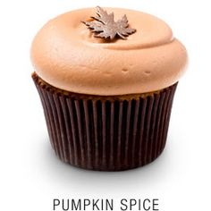 Pumpkin Spice Cupcakes with maple infused cream cheese frosting