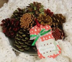 Decorate pine cones with Silhouette Glitter for a festive centerpiece.