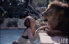 Tippi Hedren had a pet lion....