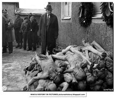 A resident of Weimar a town near Buchenwald concentration camp watches a pile of corpses after the Americans liberated the camp. The residents said they knew nothing.
