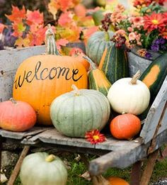 Welcome pumpkin: Decorating With Pumpkins
