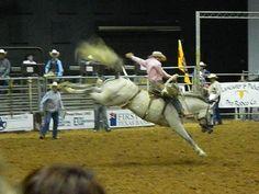 4th of July Rodeo, Belton, TX