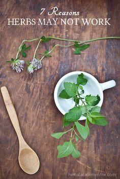 7 Reasons Herbs May Not Work