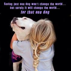 Love this! adopt a dog, animal shelters, shelter dogs, pet, pit bull, puppi, quot, friend, little girl hair