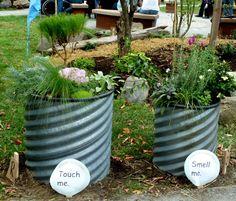 Sensory Garden Planters