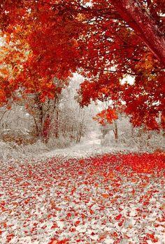 First Snowfall, Duluth, Minnesota