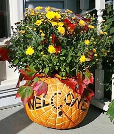 Pumpkin Planter! Love the look! Will remember this for Fall!