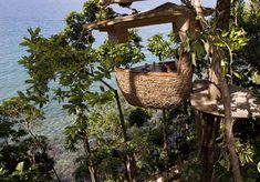 resorts, tree houses, thailand, bird nests, trees