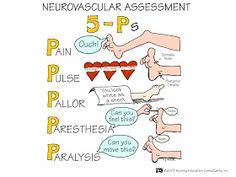 Nursing School: Assessment Mnemonics