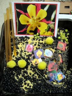 The Good Long Road: Bees Sensory Bin & Honey Painting...Teaching Kids the Importance of Bees #sensoryplay #sensory #montessori