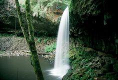 Beaver Falls, northwestern Oregon   © Marsha K. Russell