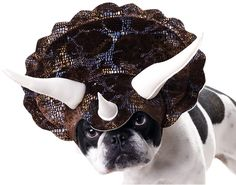 Triceratops Dog Costume - Dog Halloween Costumes from EntirelyPets