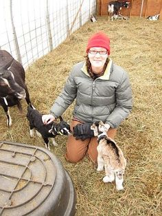 Great blog about homesteading and everything related to it.