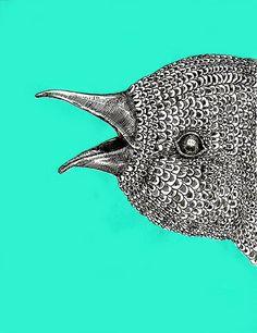 Birdie Bardot by Luis Alfonso Pérez, via Flickr