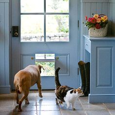 Spring for a Doggie/Cat Door. Smart ways to make your home a safe pet-friendly haven.