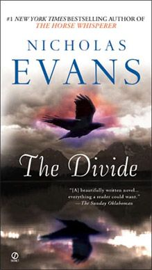 The Divide by Nicholas Evans. I loved this book and struggled to put it down. Never sure of the full story until the end it keeps you gripped. Typical Mother, Father, children divorce story but dealt with perfectly, describing how it can be. Then the daughter's decline into a bad life is depicted exactly how it can so simply happen - scary. I recommend this book for a read