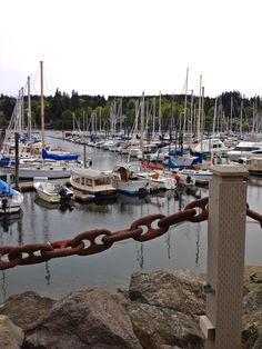 Bainbridge Island, Washington state