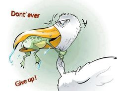 Courtesy of Little Like's funni stuff, laugh, funny birds, frog, funny images, inspir, humor, giving up, quot