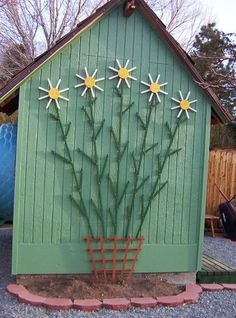 tobacco stick daisy --- love this!!  Would like this on the side of my chicken coop