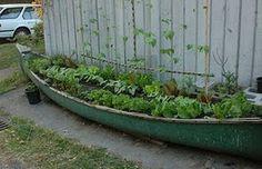 old canoe container garden
