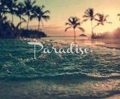 ♥ Paradise