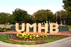 University of Mary Hardin-Baylor | Education for Life... Experience of a Lifetime