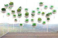 Vertical green house!