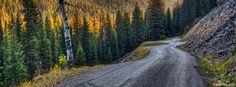Skalkaho Highway - Mark Mesenko