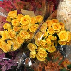 Lovely Yellow Roses from our 10th & Reed store. #ACMEMarkets #Roses
