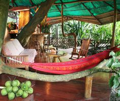 Worlds Coolest Tree-House Hotels: Tree House Lodge, Limón, Costa Rica