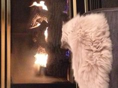 Miley watching the fire!