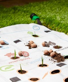 This UrbMat Guided Gardening Mat by UrbMat is perfect! #zulilyfinds