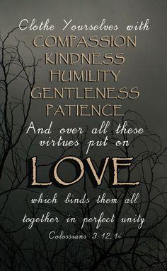 Colossians 3:12,14