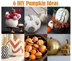 DIY Pumpkin Ideas.