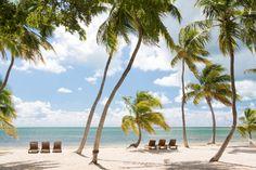 Lounge on the beach at the Moorings in #Islamorada, #Florida