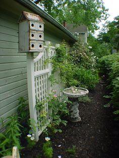 Love the bird house & bird bath!!