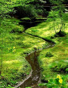 RP » small stream through the moss garden at the Bloedel Reserve on Bainbridge Island, WA.  This area designed by Fujitaro Kubota.