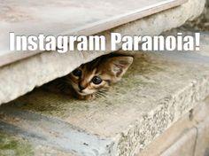 Cosa pensa Philippe Gonzalez sull'aggiornamento dei Termini di Servizio riguardo a Instagram? Tutto nel mio nuovo post.