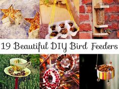 19 Beautiful DIY Bird Feeders