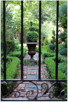 Beautiful ...a peek through the garden gate.