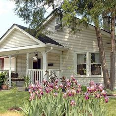 Broad Ripple bungalow - Indianapolis