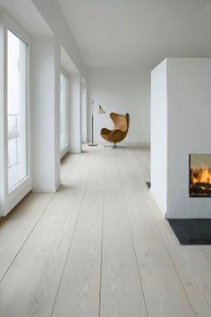 living area   firepl