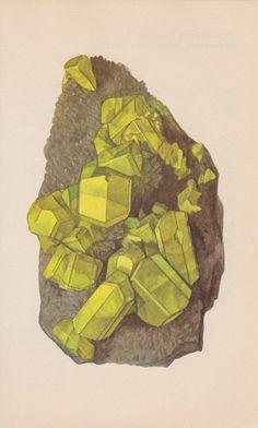 yellow stone print