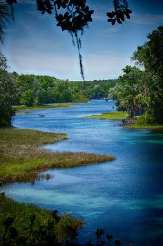 Rainbow River State Park in Dunnellon,FL