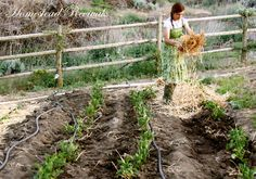 Homestead Revival: Passing on a Passion for Homesteading
