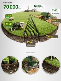 graphic design, info graphic, agricultur infograph, behance, infograph chart, agriculture, graphics, anton egorov, pie charts
